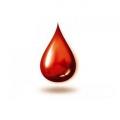 До чого сниться кров