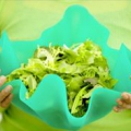 Плюси і мінуси вегетаріанства